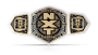 NXT Women's Tag Team Championship